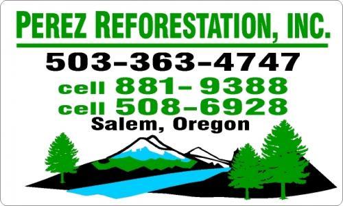 perez reforestation magnetics